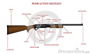 Labeled Shotgun Diagram Stock Image  Image: 33392141