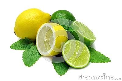 Lemon And Limes Stock Image Image 2544241