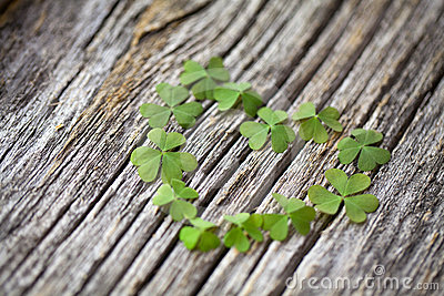Butterfly Wallpaper For Desktop With Animation Lucky In Love Clover Heart On Wooden Background Stock