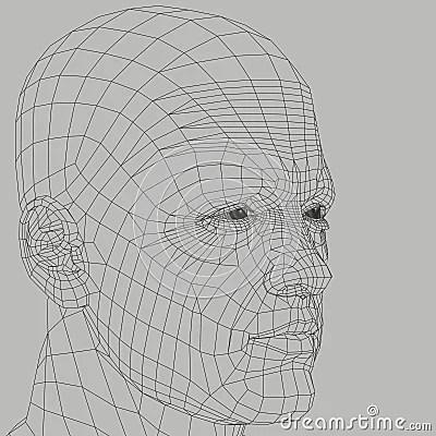 Man Wireframe Illustration Royalty Free Stock Image