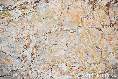 Metamorphic Rock Stock Photo Image 57800134