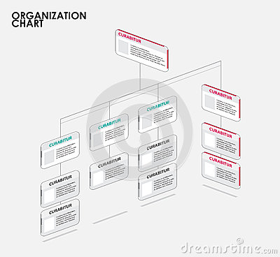 Organization Chart Infographics With Tree, Diagram Flow