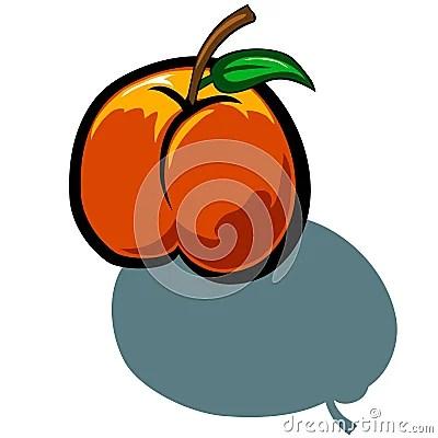 Peach Stock Vector - Image: 49978666