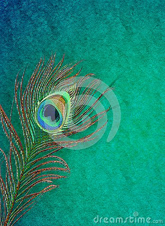 Peacock 3d Wallpaper Download Peacock Feather Grungy Background Stock Illustration