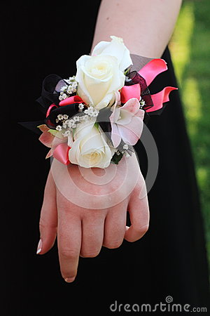 Pink Black And White Prom Corsage Stock Image  Image 31422031