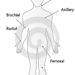 Foot Pulses Diagram Standby Generator Transfer Switch Wiring Of The Body Data Blog Where Are Www Picsbud Com Location