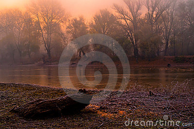 spooky autumn landscape stock