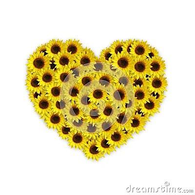 Sunflower Heart Royalty Free Stock Photo  Image 7932755