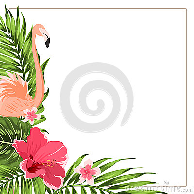 Tropical Exotic Border Frame Template Green Pink Stock