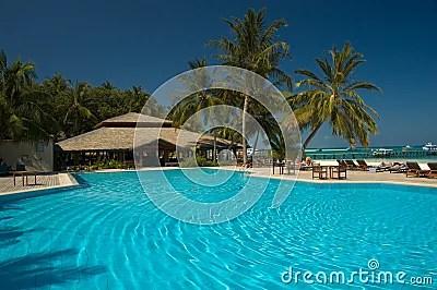 Zwembad Tropisch
