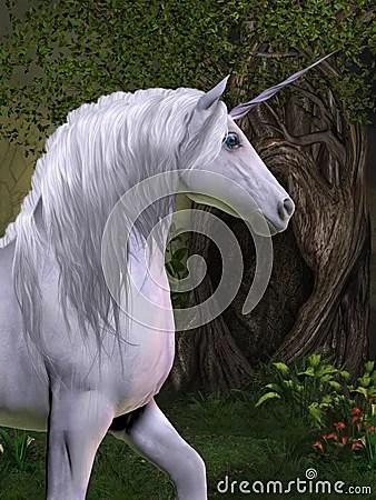 Unicorn Horse Royalty Free Stock Image  Image 32370566