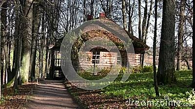 Vieille Maison Dans La Fort Dautomne Banque De Vidos