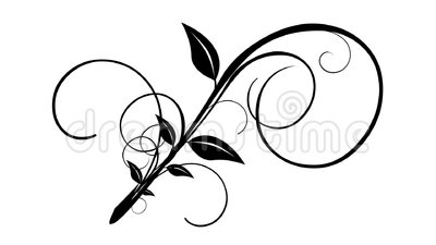 Vines Amp Leaves Growing Isolated Flourish Stock Video