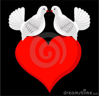 White Kissing Doves In Love On Heart Wedding Card Stock Photos  Image 23206963
