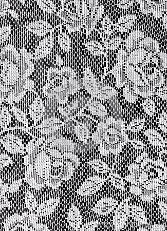 White Lace Roses Texture Stock Photo Image 42483250