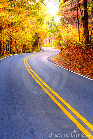 Winding Road Royalty Free Stock Photography Image 6310027