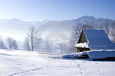 Winter Scene Royalty Free Stock Photography Image 7668187