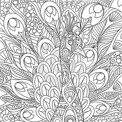 Zentangle Stylized Peacock Stock Vector Image 67965023