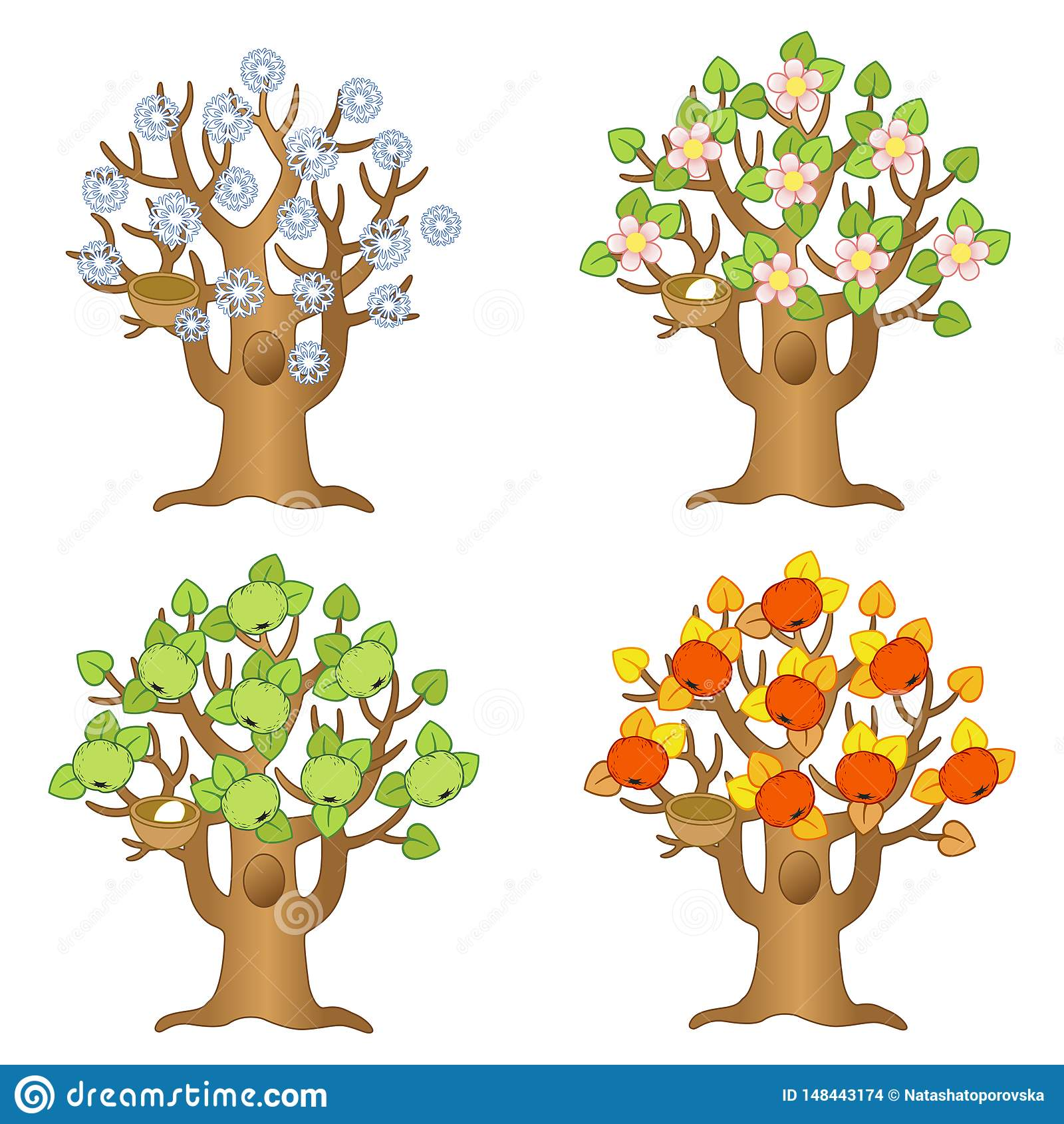 Apple Tree Different Seasons Stock Illustrations 43