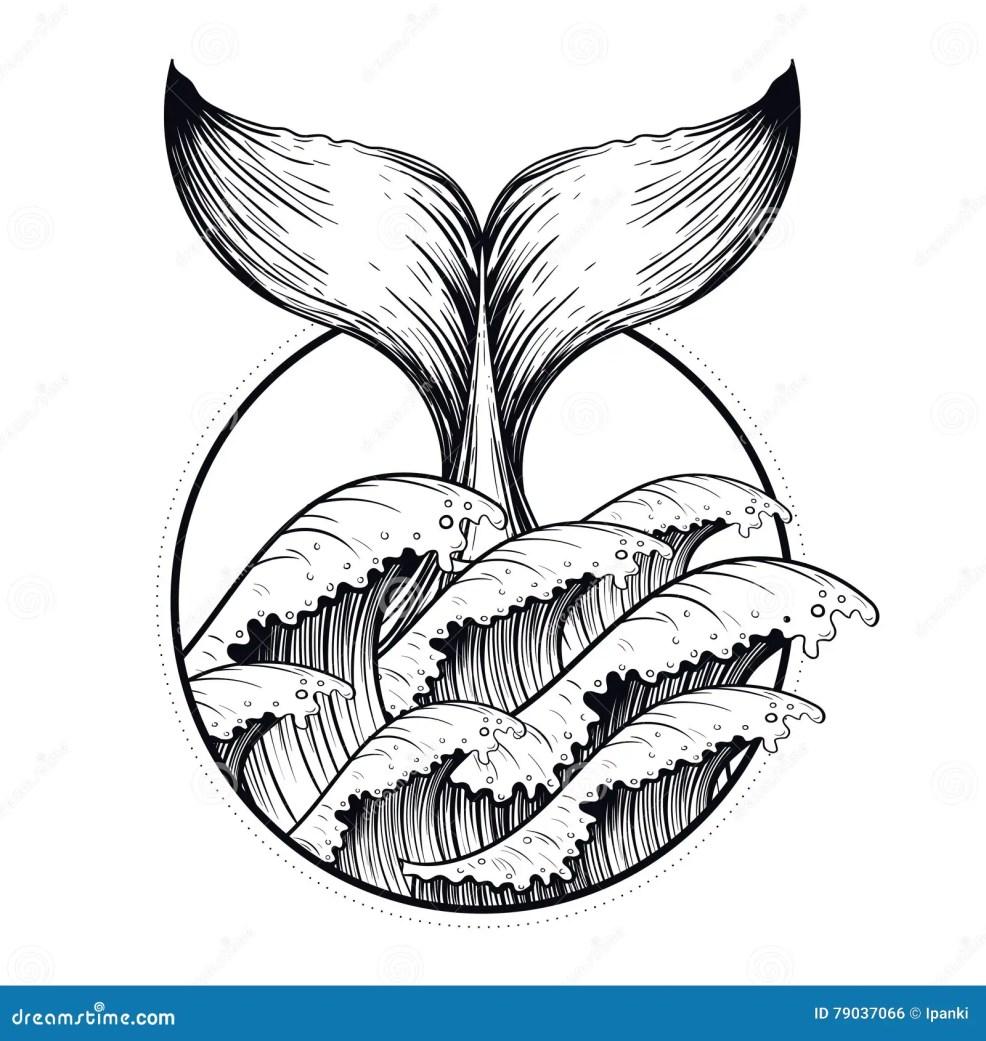 кабель кита в море развевает татуировка Blackwork Boho линия