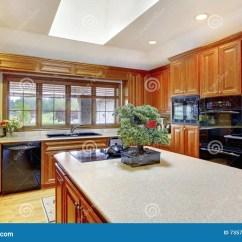 Kitchen Ceiling Fixtures Cabinet Faces 与白色天花板和天窗的布朗木厨房内部库存照片 图片包括有最高限额 内部 与黑固定装置的布朗木厨房内部 有小的盆景树的厨房在罐并且白色天花板和天窗