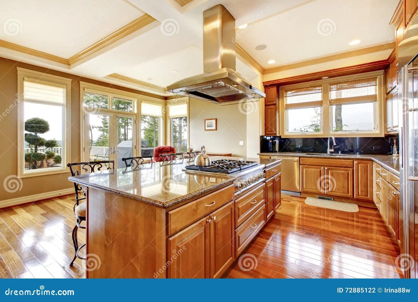 backyard kitchen designs country sinks 与硬木地板 海岛 g的现代木厨房室设计库存照片 图片包括有水槽 顶层 敞篷 花岗岩后院的桌面和看法的现代木厨房室设计