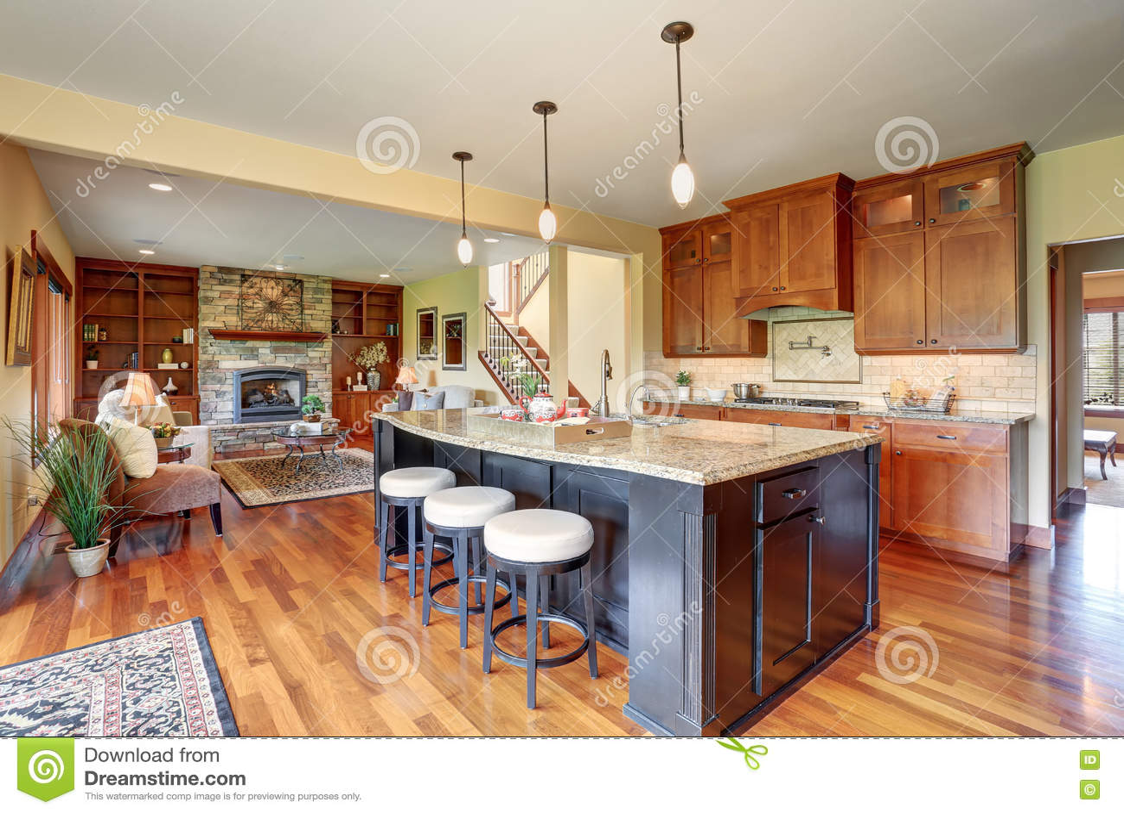 small kitchen plans best design books 与空心肋板计划 客厅看法的小厨房区域库存图片 图片包括有装备 硬木 客厅看法的小厨房区域