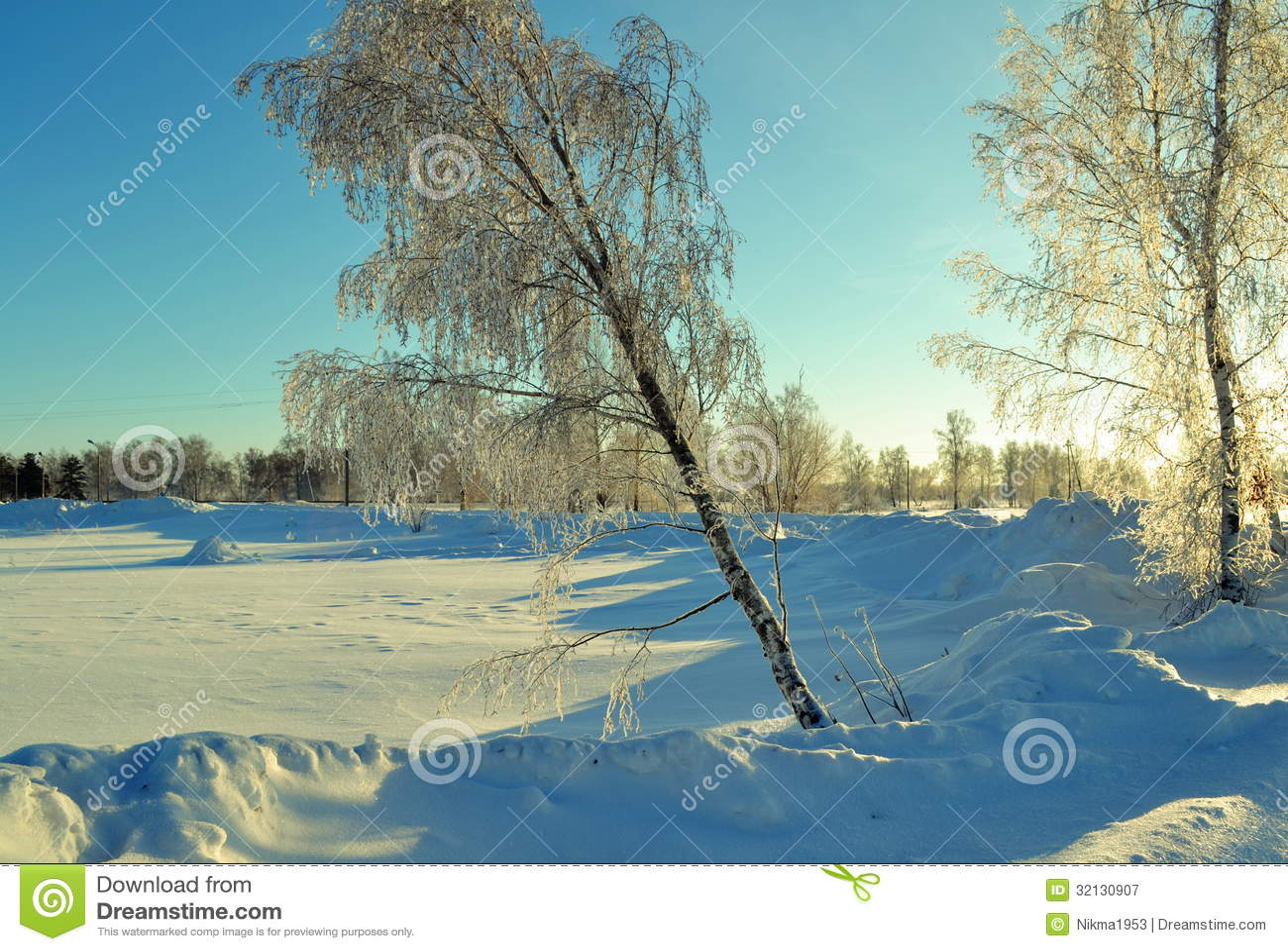 冬天西伯利亞人 免版稅圖庫攝影 - 圖片: 32130907