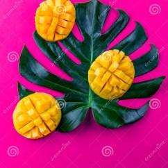 Summer Kitchen Ideas Best Radio 创造性的布局由夏天热带水果芒果和热带叶子制成在桃红色背景平的位置热带 创造性的布局由夏天热带水果芒果和热带叶子制成在绿松石背景平的位置在倾吐的餐馆沙拉的主厨概念食物新鲜的厨房油橄榄热带概念