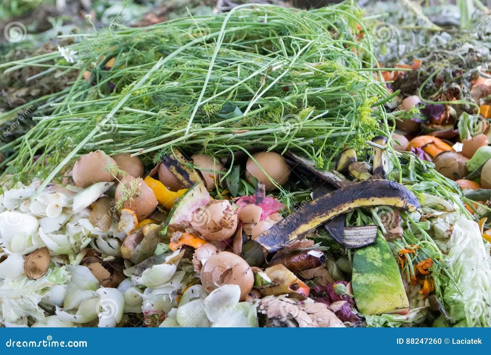 kitchen composter diy countertops 在厨房废物的飞行 堆肥成份库存照片 图片包括有降低 回收 陆运 食物 堆肥成份
