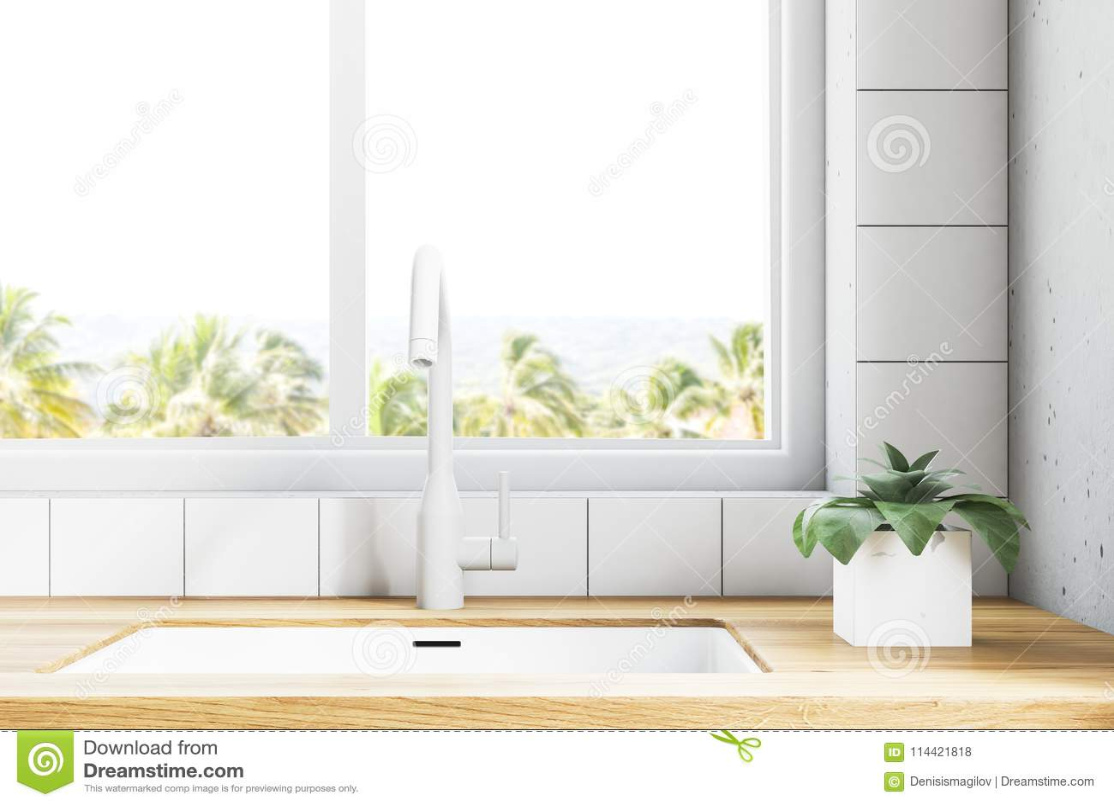 blanco kitchen sink make up air for residential hoods 在窗口附近的白色厨房水槽有热带看法库存例证 插画包括有龙头 国内 关闭在水槽与的一个木厨房工作台面修造的站立在与一处热带风景的一个大窗口下3d翻译嘲笑