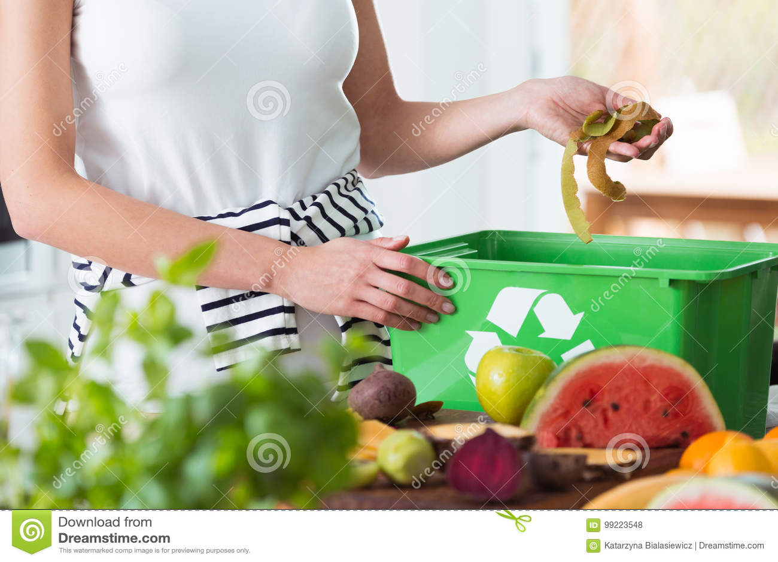 kitchen composter cabinets for mobile homes 堆肥有机厨房废物的妇女库存照片 图片包括有绿色 概念 申请人 室内 回收有机厨房废物的妇女通过堆肥在绿色容器在膳食的准备时