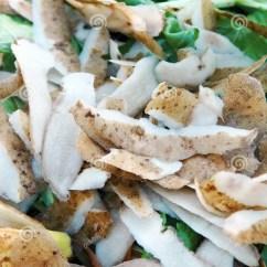 Kitchen Compost Container Slice Rugs Mats 堆肥材料库存图片 图片包括有使用 芹菜 下来 腐烂 土壤 房子 浪费 在庭院天然肥料堆的厨房废物