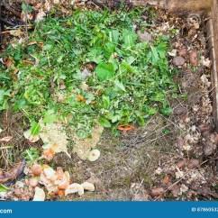 Kitchen Composter Kraftmaid Cabinets 堆肥材料库存照片 图片包括有工厂 双筒望远镜 食物 友好 楼梯栏杆 堆肥在天然肥料堆的材料