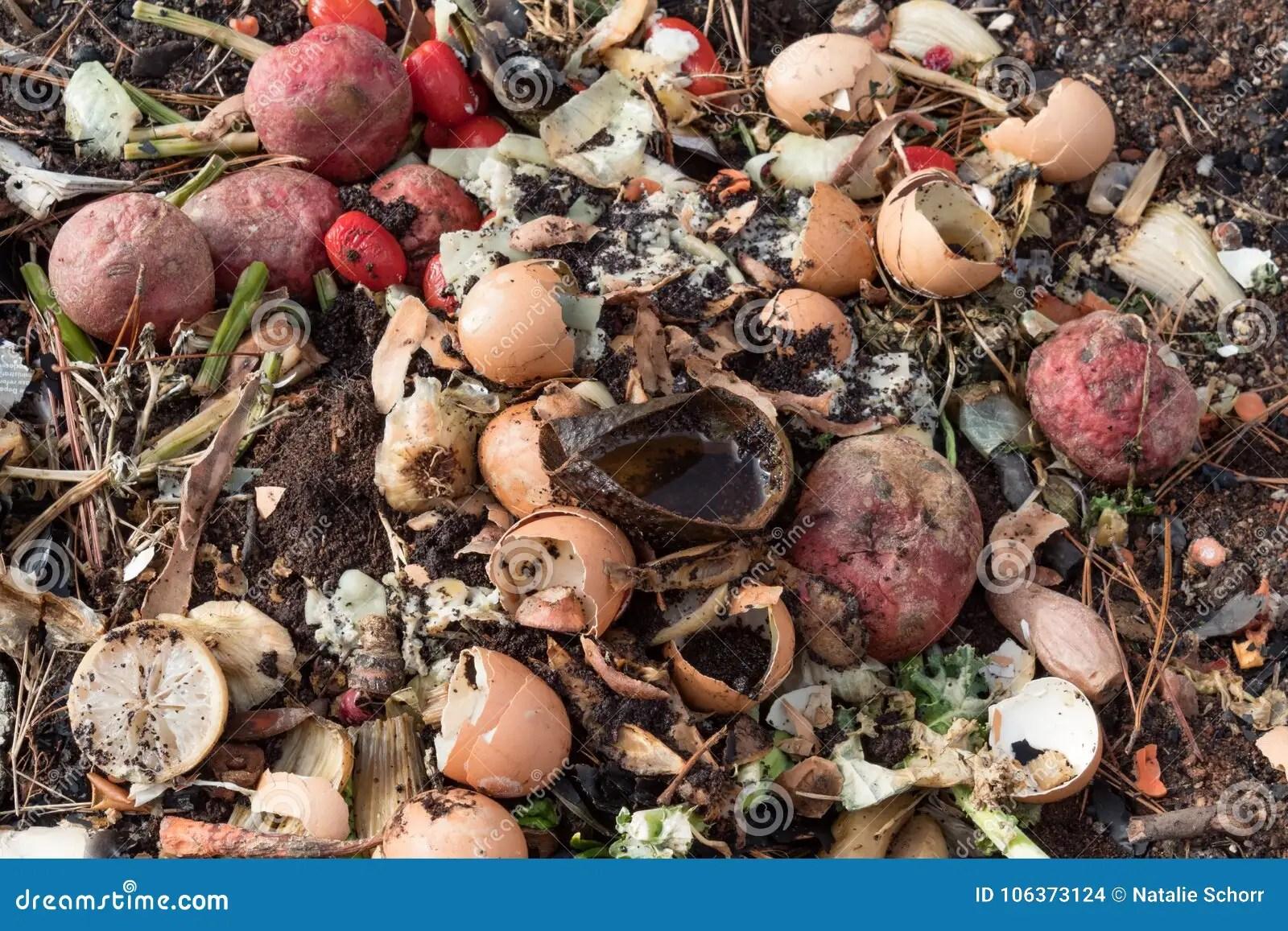 kitchen compost container water efficient faucet 堆肥腐朽的厨房水果和蔬菜小块堆库存照片 图片包括有方面 有机 杉木 堆肥腐朽的厨房t和菜小块 水平的方面堆