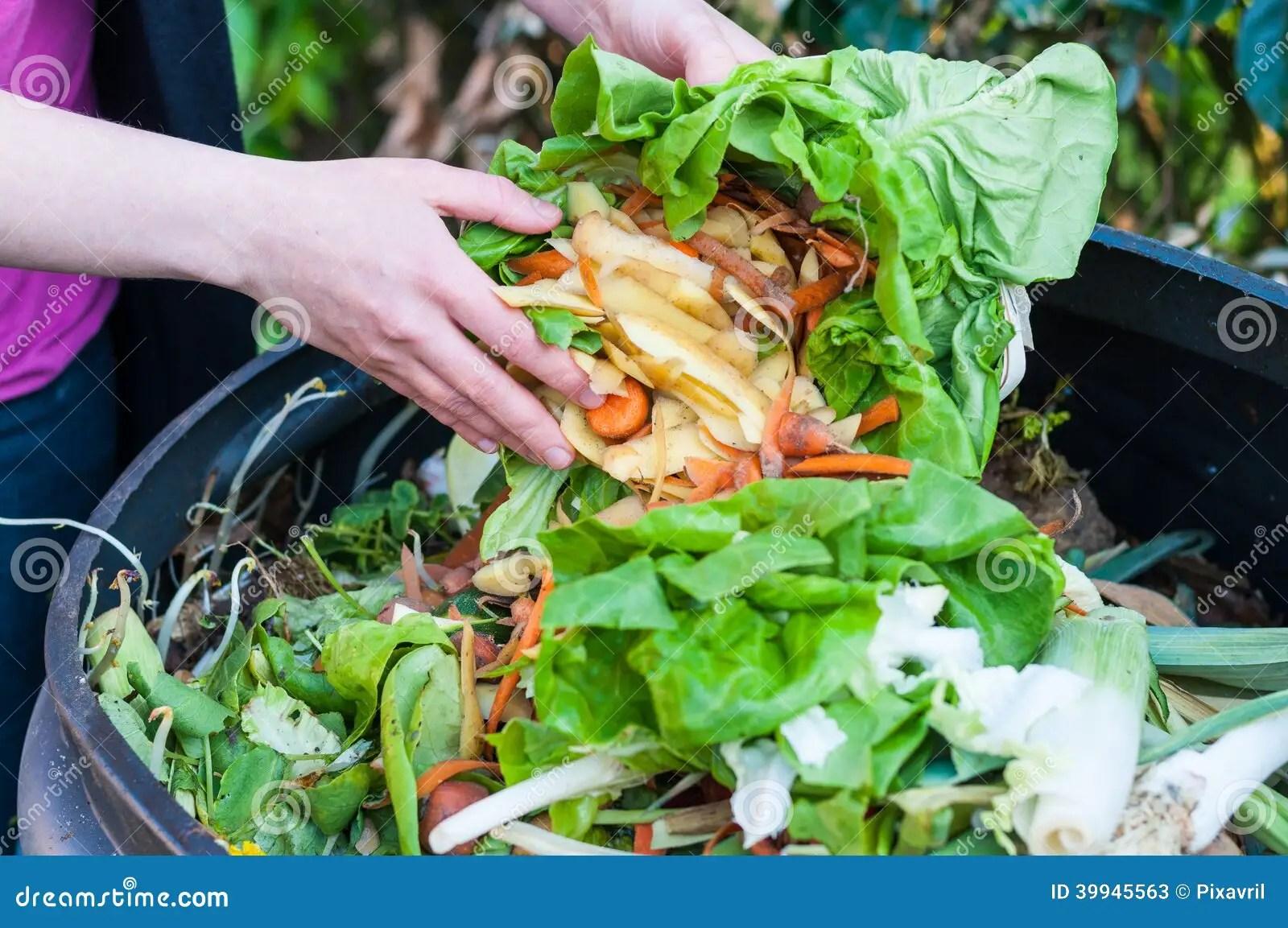 kitchen compost container play island 堆肥库存图片 图片包括有厨房 绿色 浪费 肥料 环境 容器 票据 堆肥厨房废物的妇女