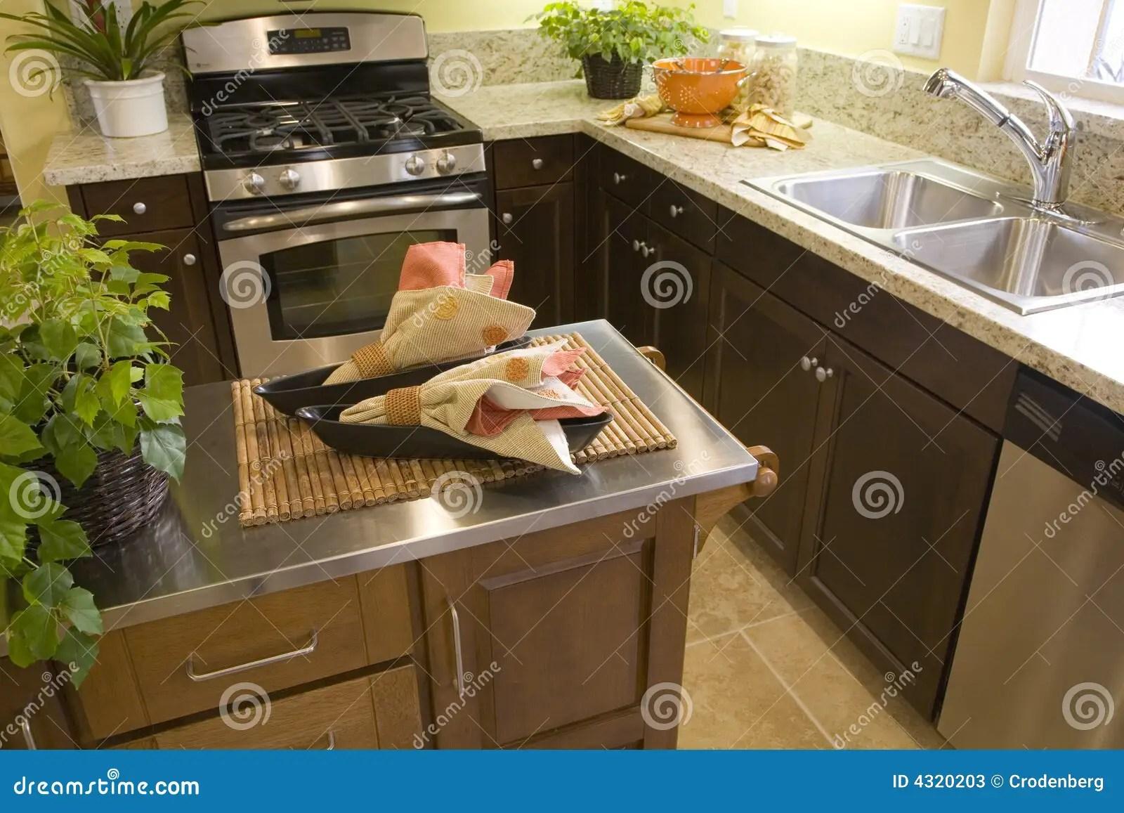 kitchen aid ovens cat 家庭厨房豪华库存图片 图片包括有烤箱 豪宅 家具 设计员 改善 内部 家庭厨房豪华