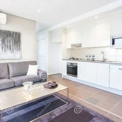 Lemon Kitchen Rug Industrial Shelving 有白色颜色的厨房在沙发和地毯附近库存图片 图片包括有照明设备 杯子 有白色颜色的厨房在沙发和地毯附近