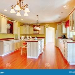 Gold Kitchen Compost Pail 有空白古色古香的机柜的金厨房 库存照片 图片包括有房子 简单 典雅 有空白古色古香的机柜和樱桃硬木的金厨房