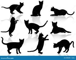 Malvorlage Katze Mit Buckel   tippsvorlage.info ...