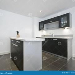 Rolling Island Kitchen Sink Faucets At Lowes 现代小岛的厨房库存照片 图片包括有出票人 滚刀 厨师 拱道 碗柜 小岛厨房中间现代工作