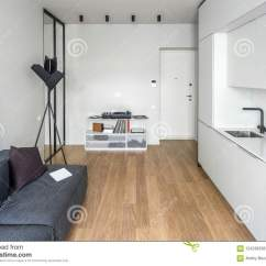 Kitchen Vinyl Farmhouse Tables 现代样式的厨房与轻的墙壁库存照片 图片包括有创造性 大厅 生活方式 一个现代样式的时髦厨房与轻的墙壁和一个木条地板在地板上有白色衣物柜和抽屉 水槽 有枕头的灰色沙发 黑落地灯 与乙烯基球员的立场 镜子