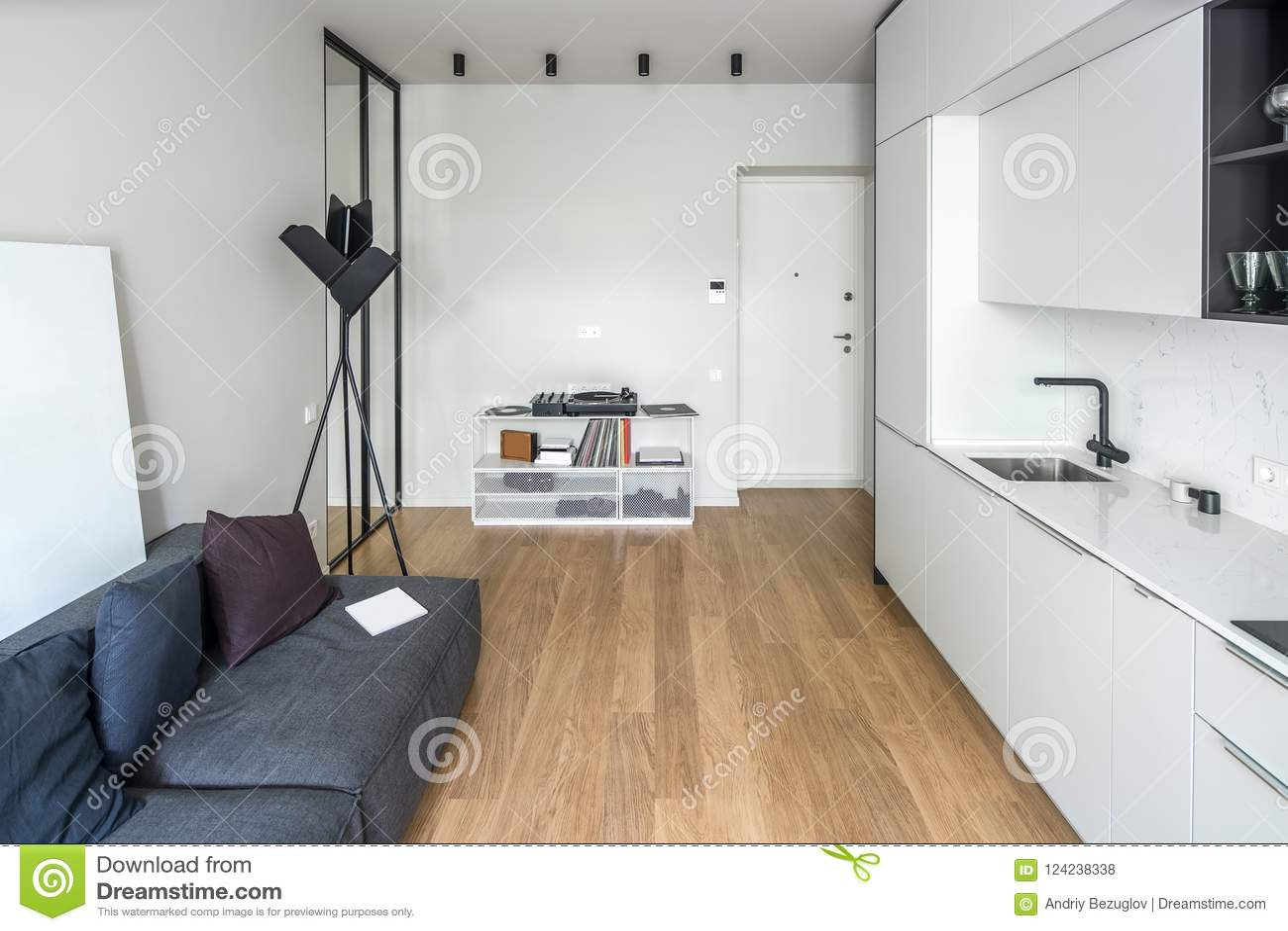 kitchen vinyl low flow faucet 现代样式的厨房与轻的墙壁库存照片 图片包括有创造性 大厅 生活方式 一个现代样式的时髦厨房与轻的墙壁和一个木条地板在地板上有白色衣物柜和抽屉 水槽 有枕头的灰色沙发 黑落地灯 与乙烯基球员的立场 镜子