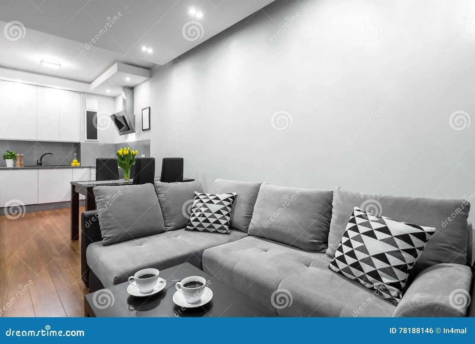 kitchen layout ideas tile backsplashes 现代舱内甲板有开放布局想法库存照片 图片包括有beautifuler 理想 与大沙发 黑暗的用餐的集合和光开放厨房的新式的家庭内部