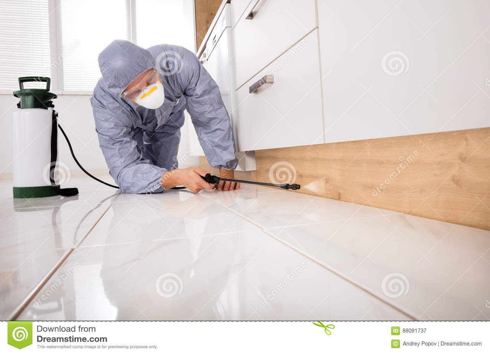 kitchen side sprayer software 驱除剂喷洒的杀虫剂在厨房里库存图片 图片包括有防护 成人 藏品 工作 驱除剂喷洒的杀虫剂在厨房里