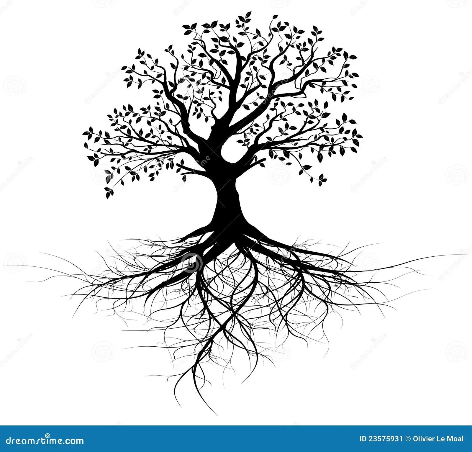 黑色根源全部结构树的向量 向量例证. 插画 包括有 分级显示, 叶子, 艺术, 全部, 年龄, 线路, 剪影