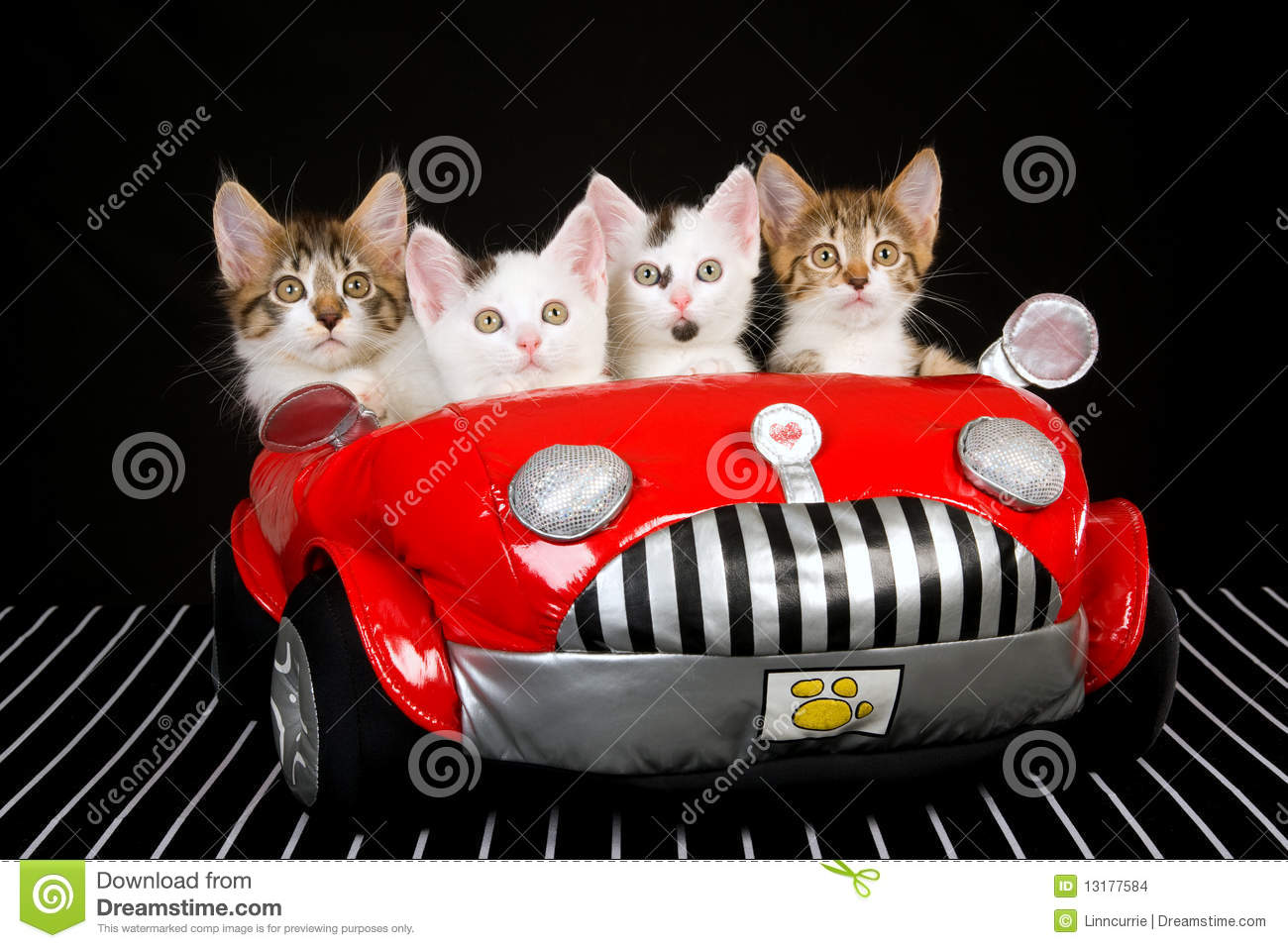 4 Cute Kittens In Red Soft Toy Car Stock Images  Image