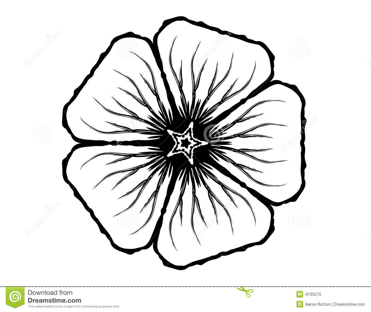 5 Petal Flower Glyph Stock Illustration Image Of Round
