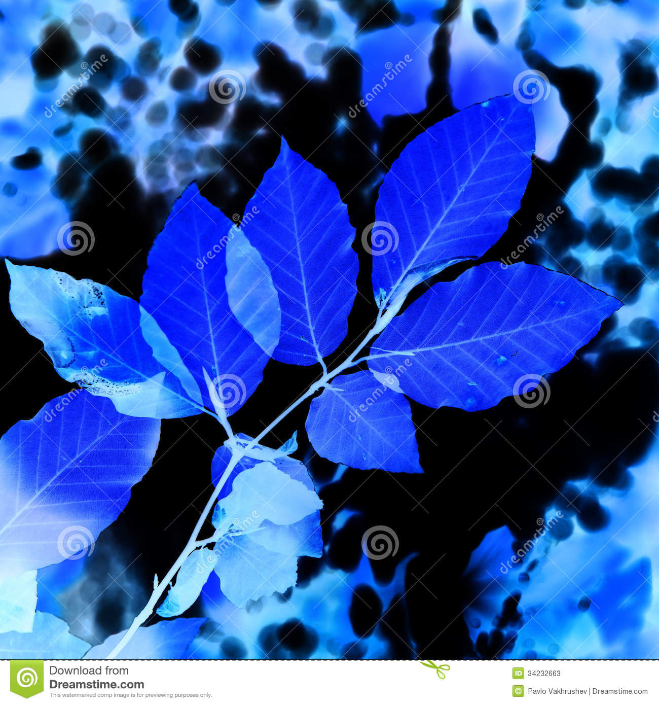 abstract blue leaves stock