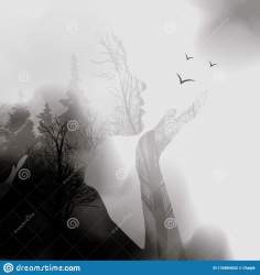 Abstract Woman Face Silhouette Ink Effect Forest Background Vector Double Exposure Illustration Woman Face And Beautiful Nature Stock Illustration Illustration of birds conceptual: 134884652